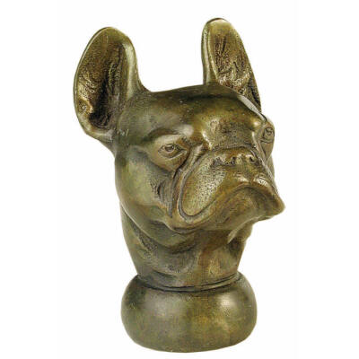 Botfogó angol bulldog fejjel