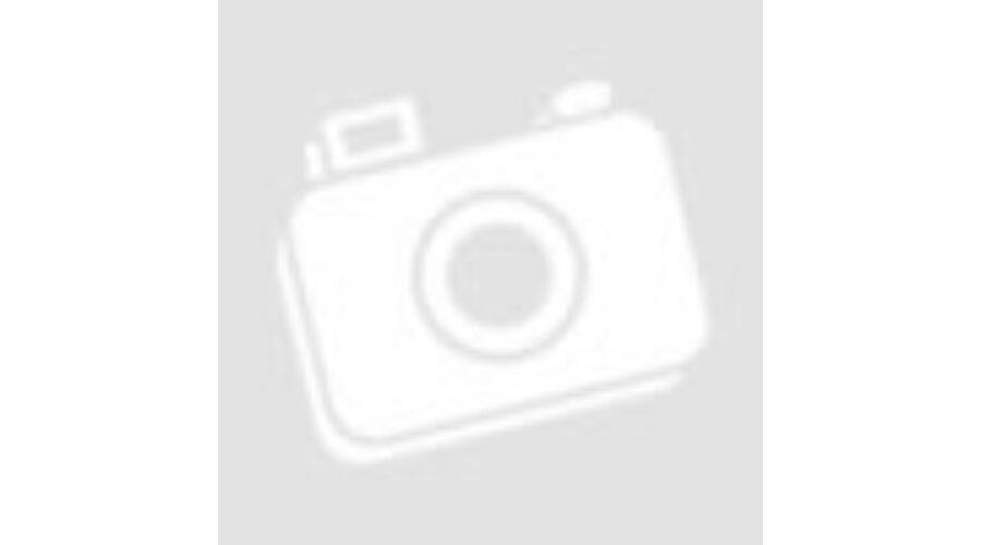 d752c727a2 Távirányítós SCANIA billenő pótkocsival - Távirányítós modellek ...