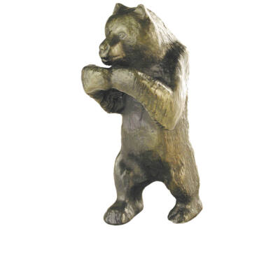 Medve, kicsi, álló